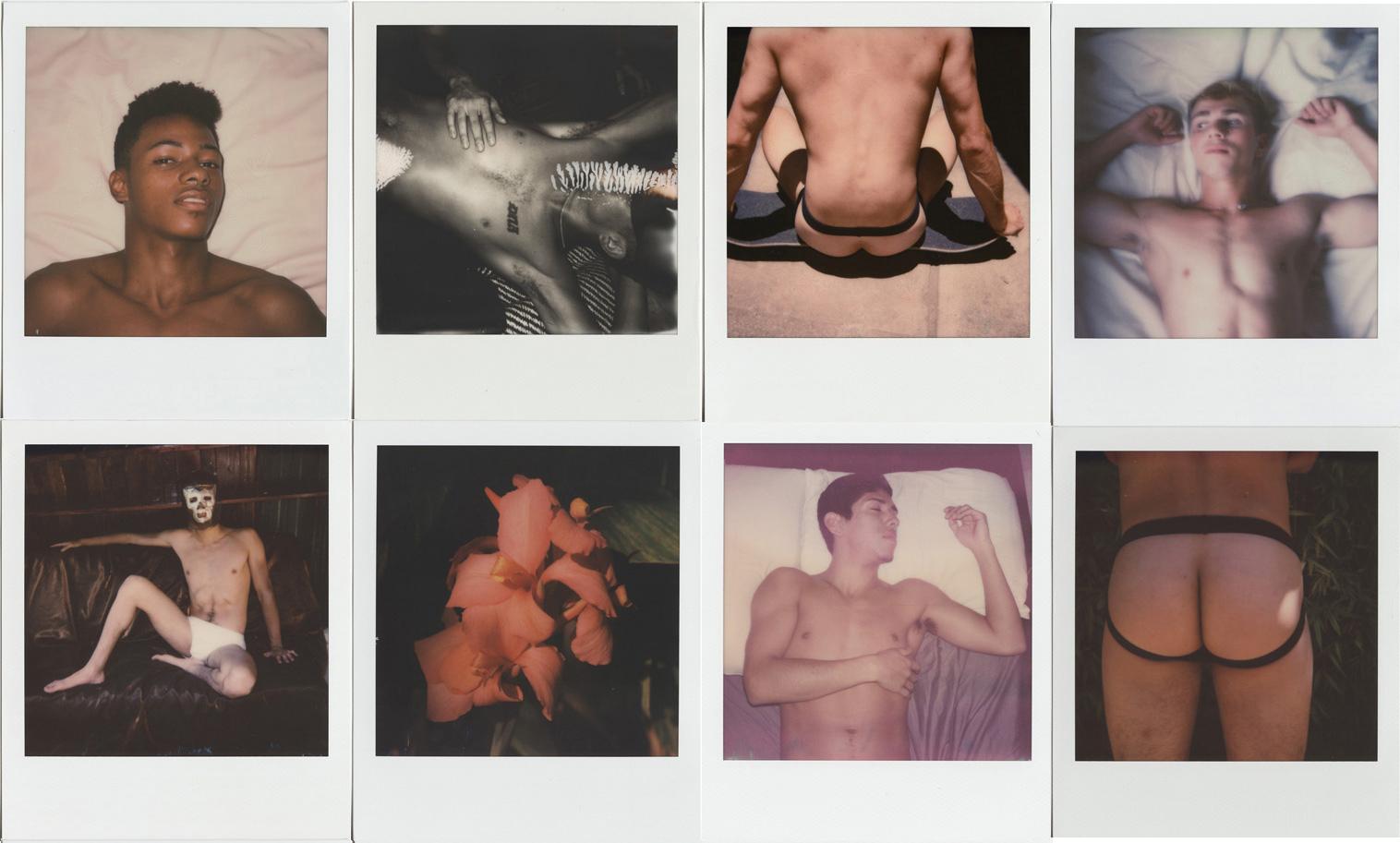 Polaroids, Stuart Sandford, 2017